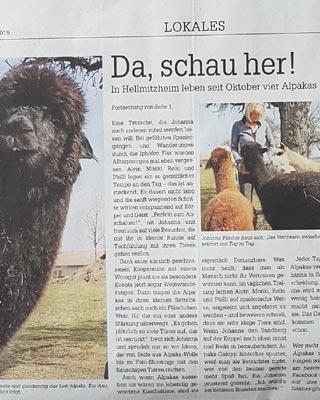 Hannas-Glücks-Alpakas